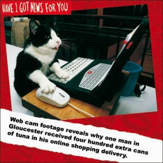 Internet shopping cat
