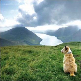 Overlooking Wastwater