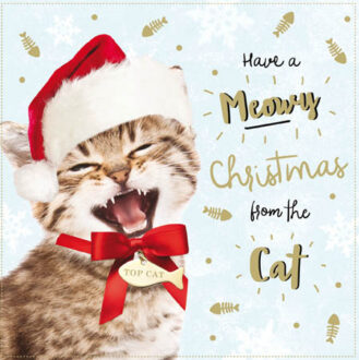 xmas-from-the-cat